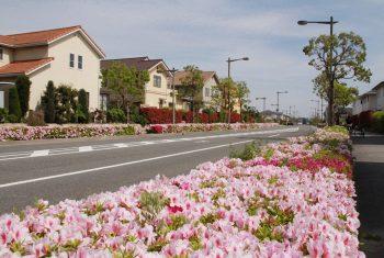 南芦屋浜の住宅地