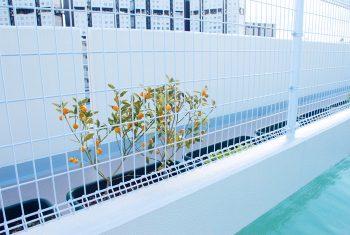 菜園、園芸スペース